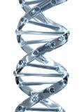 DNA van het kristal royalty-vrije stock afbeelding