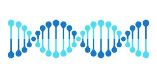 DNA vector icon chromosome genetics helix gene. DNA vector icon chromosome genetics helix or DNA gene molecule Stock Photos