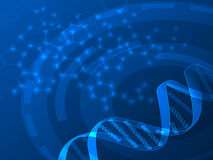 DNA vector medical background Royalty Free Stock Images