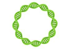 DNA verde Foto de archivo libre de regalías