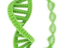 DNA verde Imágenes de archivo libres de regalías