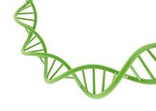 DNA verde Imagenes de archivo