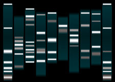 Dna white. Dna medical illustration with indicator marks and black background Stock Photo
