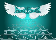 Dna witth wing Royalty Free Stock Photo