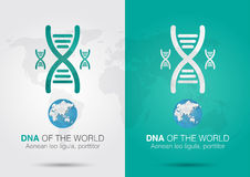 DNA of the world. Icon symbol DNA and the world with a chromosom Stock Images