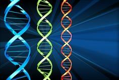 DNA x 3 Immagini Stock