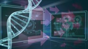DNA y flechas stock de ilustración