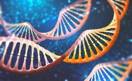 DNAforskningmolekyl Analys av den m?nskliga genom f?r struktur royaltyfri illustrationer