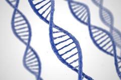 DNAmolekylar på vit bakgrund Arkivbild