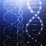 DNAmolekylstruktur på mörk bakgrund vetenskap Arkivfoto