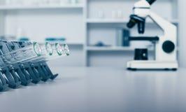 DNAprövkopior är den laddade plattan för PCR-analys arkivbilder