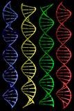 DNAs (3D). Photo of DNAs (3D) on black background stock illustration