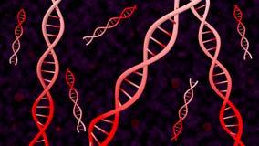 DNAspiral Arkivbilder