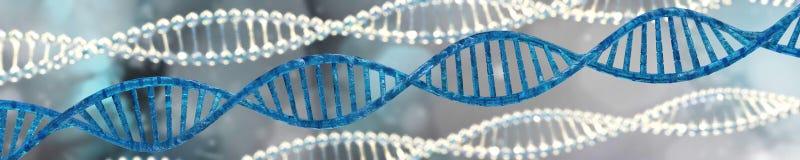 DNAspiral, tolkning för RNA 3d Royaltyfri Bild