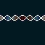 DNAspiralbakgrund Royaltyfri Fotografi