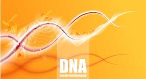 DNAstrukturmolekyl, hemical vektorillustration för medicinsk vetenskap Fotografering för Bildbyråer