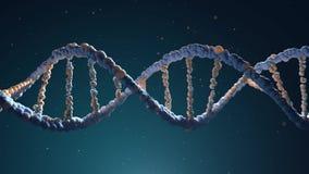 DNAtråden monteras från olika beståndsdelar stock video