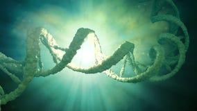 DNAtrådmodell vektor illustrationer