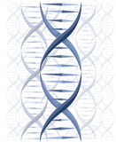 DNAvektorbakgrund Arkivfoto