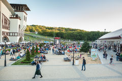 Dnepropetrovsk, Ukraine - 3. Juni 2017: Leute picknicken im Park Lavina mit Familie in Dnepropetrovsk, Ukraine im Juni lizenzfreies stockbild