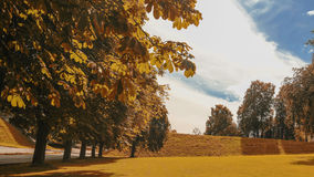 dni słonecznej park zdjęcia stock