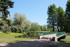 dni słonecznej park zdjęcie royalty free