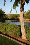 dni słonecznej park Fotografia Royalty Free