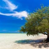 Dnia tropikalny morze Zdjęcia Stock