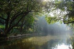 Dnieje nad jeziorem w parku miasto Guangzhou, Chiny Zdjęcie Royalty Free