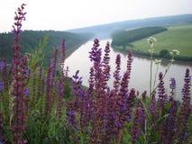 Dniester ποταμός Στοκ φωτογραφία με δικαίωμα ελεύθερης χρήσης