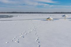 Dnipro city beach covered with fresh snow and human footprints st sunny winter day Royalty Free Stock Images