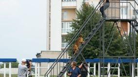 Dnipro, Ukraine 7. August 2018: Klettern der Treppe auf Hindernisl?ufen an der nationalen Meisterschaft 3d des Hunde- Staatsangeh stock video
