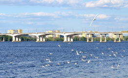 Dnipropetrovsk city quay, Dnieper river, Ukraine Royalty Free Stock Photography