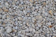 Dno morskie kamienie fotografia stock