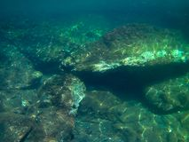 Dno morskie z rybą i skałami zdjęcia stock