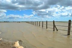 Doňana Nationaal Park tussen de provincies van Cadiz, Sevilla en Huelva in Andalusia, Spanje stock afbeelding
