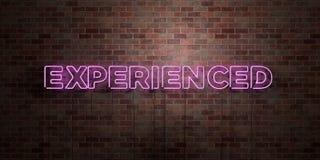 DOŚWIADCZONY - fluorescencyjny Neonowej tubki znak na brickwork - Frontowy widok - 3D odpłacający się królewskość bezpłatny akcyj royalty ilustracja