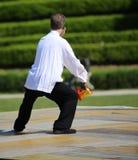 Doświadczony mistrz sztuki samoobrony Tai Chi trenuje z shar zdjęcie stock