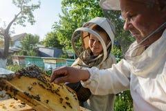 Doświadczony pszczelarka dziad uczy jego wnuk czułość dla pszczół Apiculture Pojęcie przeniesienie Zdjęcia Royalty Free