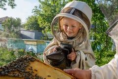 Doświadczony pszczelarka dziad uczy jego wnuk czułość dla pszczół Apiculture Pojęcie przeniesienie Obrazy Royalty Free
