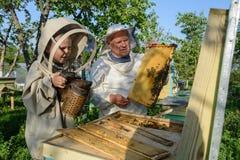 Doświadczony pszczelarka dziad uczy jego wnuk czułość dla pszczół Apiculture Pojęcie przeniesienie Obrazy Stock