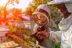 Doświadczony pszczelarka dziad uczy jego wnuk czułość dla pszczół Apiculture Pojęcie przeniesienie Zdjęcie Stock