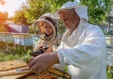 Doświadczony pszczelarka dziad uczy jego wnuk czułość dla pszczół Apiculture Pojęcie przeniesienie Fotografia Royalty Free