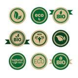 Do ícone orgânico amigável da Web do produto natural de Eco logotipo verde retro ajustado Imagens de Stock