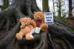 Do Bears Shit In The Woods. Photo of two teddy bears holding sign saying `yes bears do shit in the woods Stock Image