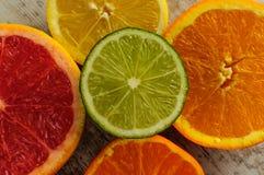 Do citrino vida ainda Fotos de Stock