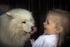 Do conceito doméstico amável dos cuidados animais do cão de cachorrinho da criança da criança do divertimento bondade animal da a foto de stock royalty free