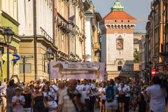 22do desfile del perro basset (Marsz Jamnikow) en la plaza del mercado principal Fotos de archivo libres de regalías