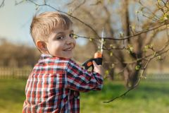 Cheerful little boy pruning a tree Stock Photo