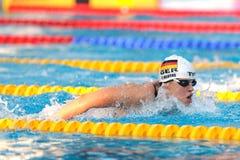 Do F. Hentke do alemão nadador buttefly Foto de Stock